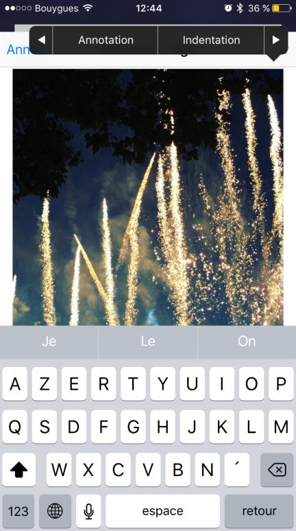 annote_photo1
